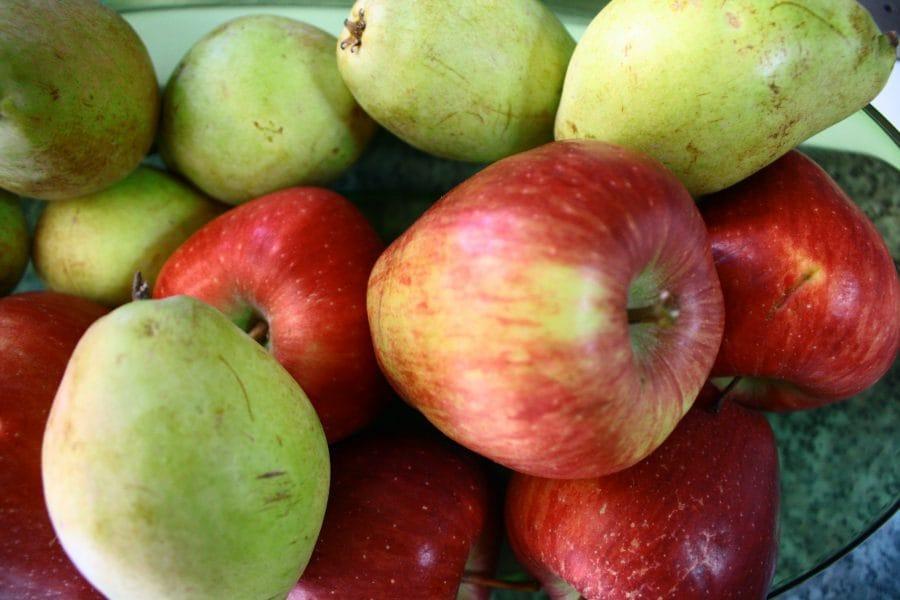 Μήλα και αχλάδια βουτύρου εικόνα
