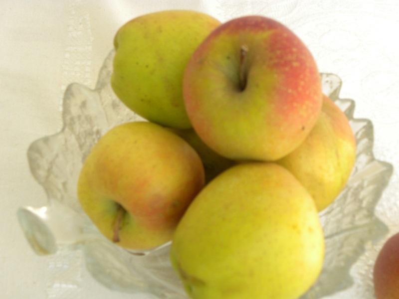 Μήλα Τριπόλεως εικόνα