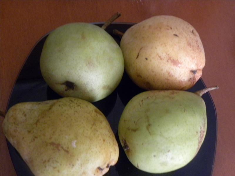 αχλάδια βουτύρου και χάιλαντ εικόνα