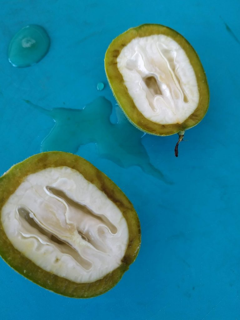 πράσινα καρύδια κομμένα εικόνα